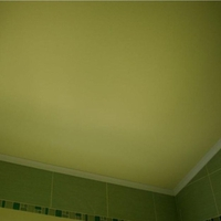 Ukraine_mat_ceiling_color_140_1