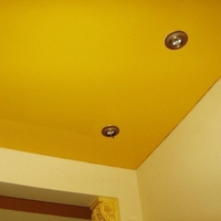 Ukraine_mat_ceiling_color_140_5